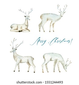 Deer Scandinavian style, watercolor botanical illustration, hand-drawn. Set of elements isolated on white background. For your projects, invitations, cards, patterns, banners, posters and more.