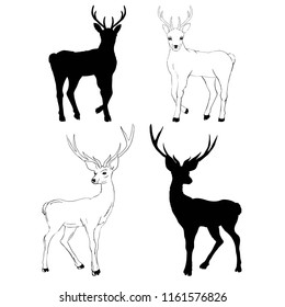 deer silhouette and sketch, illustration, animals, set on white background, animals image