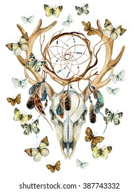 Deer skull. Animal skull with dream cather and butterfly. Deer skull and ethnic dreamcatcher with feathers and butterfly isolated on white background. Watercolor hand painted illustration.