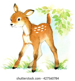 Deer. watercolor animal illustration.