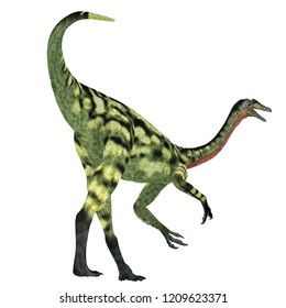 Deinocheirus Dinosaur Tail 3D illustration - Deinocheirus was a carnivorous theropod dinosaur that lived in Mongolia during the Cretaceous Period.