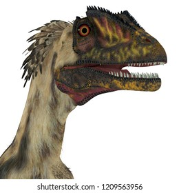 Deinonychus Dinosaur Head 3D illustration - Deinonychus was a carnivorous theropod dinosaur that lived in North America during the Cretaceous Period.