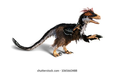 The Deinonychus was a feathered dinosaur that lived during the Cretaceous period - 3d render.