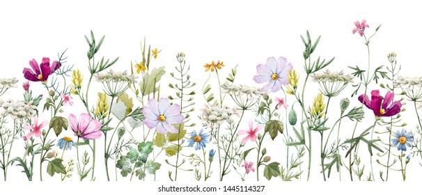 Delicate floral horizontal pattern, meadow flowers. blue daisy, pink kosmeya. Wildflowers