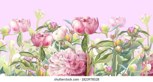 Delicate pink flowers illustration. Peonies painted on the pink background. Beautiful postcard, picture, mural, wallpaper, photo wallpaper, wedding invitation design.