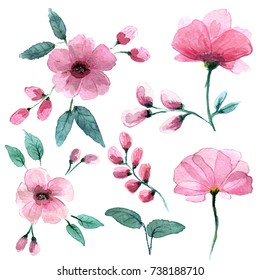 Delicate pink flowers in the style of watercolors.