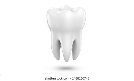 Dental 3d model of premolar tooth as a concept of dental examination teeth, dental health and hygiene. 3d rendering illustration isolated on white background