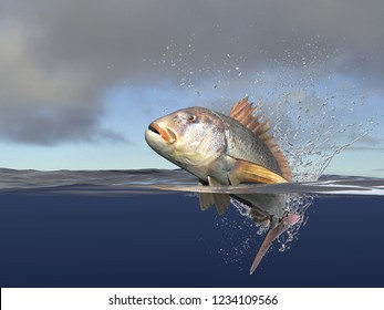 Dentex Dentex  fish jumping, half of it in water, speed and action with jumping. Cloudy background, 3d render