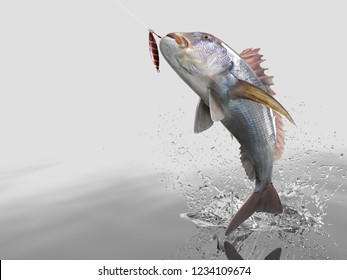 Dentex snapper fish in white background with splashes hooked by slow jigging inchiku 3d render