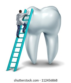 Dentist Health care and dental checkup medical concept with a doctor in uniform climbing a ladder performing an inspection and diagnosis of a healthy tooth on a white background.