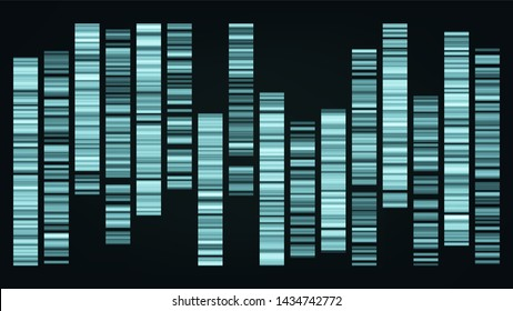 Design Color Big Genomic Data Visualization . Dna Test, Barcoding, Genomic Map Architecture. Medical Chromosome Analysis Graphic Bioinformatic Diagram Template Flat Illustration