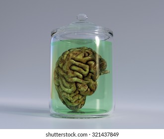 Detailed 3D render of a brain stored in a jar.