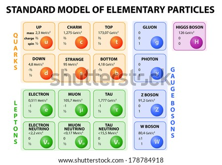 Diagram of the Standard Model of particle physics