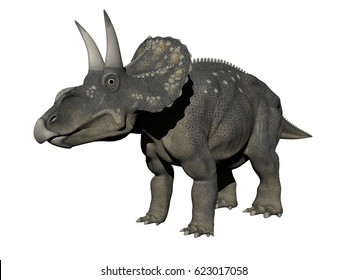 diceratops dinosaur in white background - 3D rendering