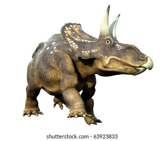 diceratops walking