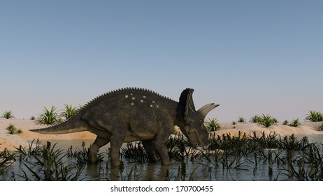 diceratops walks across hills