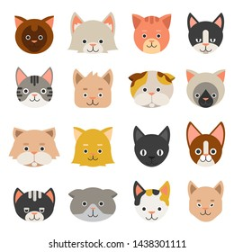 Different faces of cats. kitten character, feline kitty domestic illustration