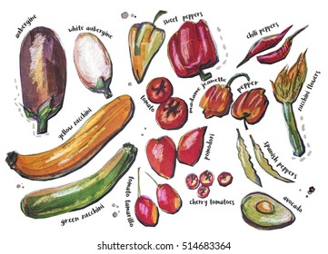 different food components, ink and pencils original drawing, isolated on white