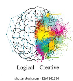 The different function of right brain and left brain