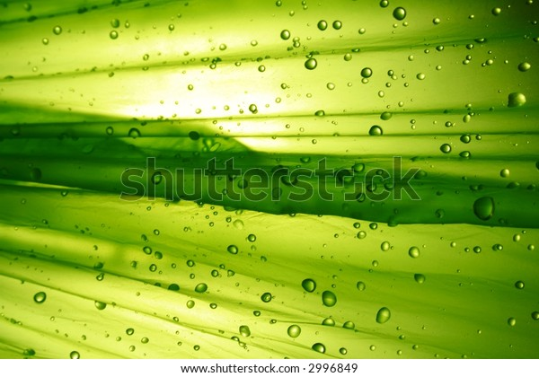 different green background with water drop