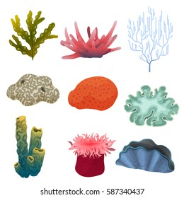 Different kind of cartoon underwater plants and color reef coral icons set. Sea bottom.