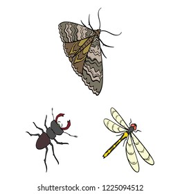 Different kinds of insects cartoon icons in set collection for design. Insect arthropod bitmap isometric symbol stock web illustration.