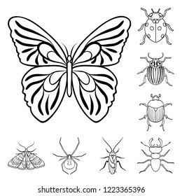 Different kinds of insects outline icons in set collection for design. Insect arthropod bitmap symbol stock web illustration.