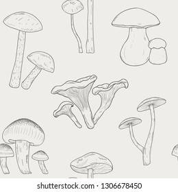 Different mushrooms outline seamless pattern. Hand drawn fungi. Armillaria, blewits, boletus, chanterelle. Black and white illustration pattern