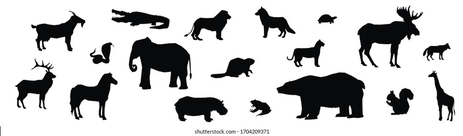 Different wild animals from forests and jungle