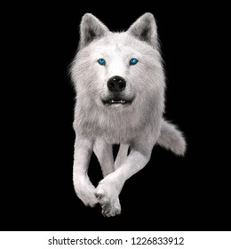 Digital 3D Illustration of a Wolf