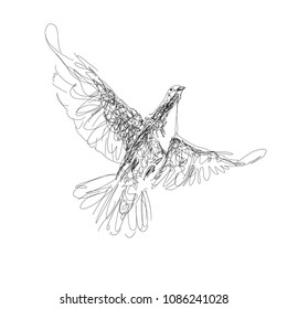 The digital black sketch, illustration of  pigeon, symbol of the Holy Spirit, isolated on white background