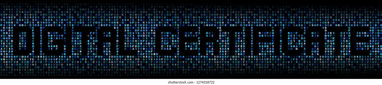 Digital Certificate text on abstract hex background illustration