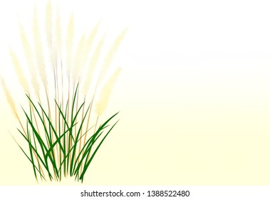 Digital drawing digital painting illustration of pampas grasses isolated on yellow and white background with copy space for text poem haiku or note