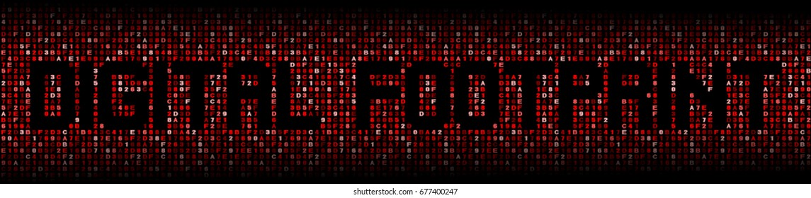 Digital Footprint text over hex code illustration