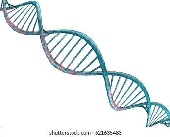 Digital illustration of a DNA model on transparent background. 3D rendering