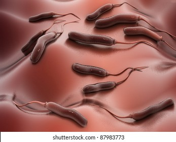 Digital illustration of E coli Bacteria in color background
