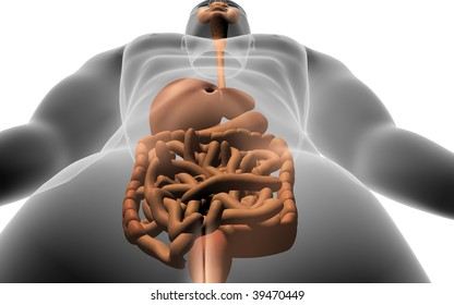 Digital illustration of human body with  digestive system