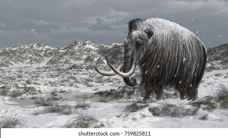 Digital illustration of a mammoth