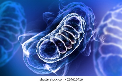 Digital illustration of Mitochondria in colour background