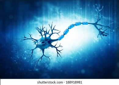 digital illustration neuron human