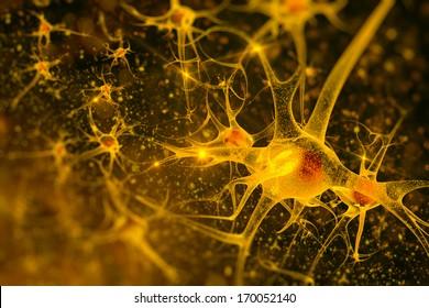 digital illustration neurons
