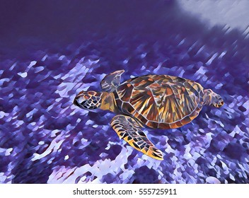 Digital illustration - Sea turtle in water. Swimming animal painting style picture. Seashore life: coral reef, stones at sea bottom, sea plants. Sea turtle in the water paint brush image. Ocean turtle
