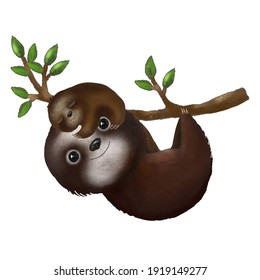 Digital Illustration of a sloth with a baby on a branch