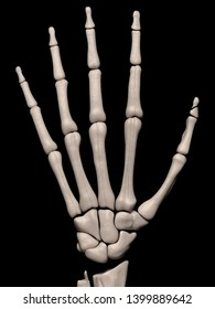 Digital medical illustration depicting a fracture of the 1st distal phalanx (thumb) of the hand. Rear/outside (dorsal) view. 3D rendering