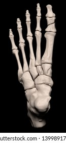 Digital medical illustration depicting a fracture of the 1st proximal phalanx (hallux, big toe) of the foot. Top (dorsal) view. 3D rendering