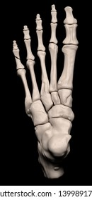 Digital medical illustration depicting a fracture of the 5th proximal phalanx of the foot. Top (dorsal) view. 3D rendering