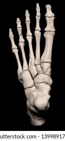 Digital medical illustration depicting a fracture of the 4th proximal phalanx of the foot. Top (dorsal) view. 3D rendering