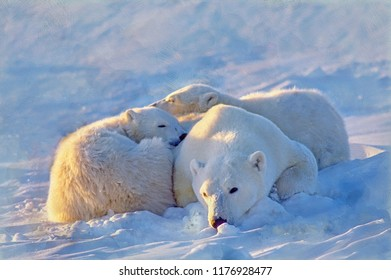 Digital oil painting of polar bear with her cubs