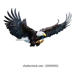 A Digital Painting of a Bald Eagle flying.