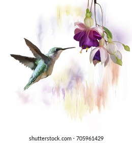 Digital Painting of  Hummingbird and flowers